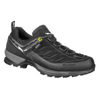 Salewa MTN Trainer Goretex