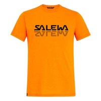 Salewa Reflection Dri-Release