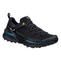 Salewa Dropline Goretex Hiking Shoes