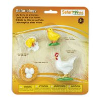 safari-ltd-life-cycle-of-a-chicken