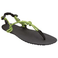 Xero shoes Genesis Sandals