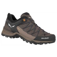 Salewa MTN Trainer Lite Goretex Hiking Shoes